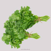 Coriander leaf (Per Bunch)