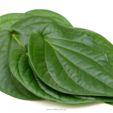 Betel Leaf (Only  by Order) 250 gr