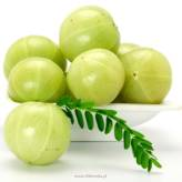 Indian Gooseberry (Amla)