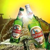 Kingfisher 4,8% (24 x 330 ml)